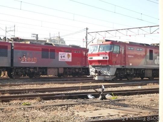 P1190257