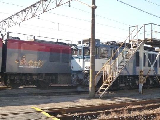 P1190264