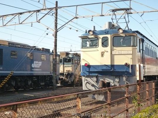 P1190266