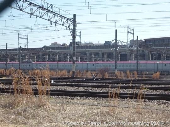 P1250161